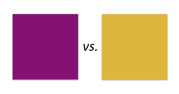 Purple versus Gold. Image by Vickie Bates.